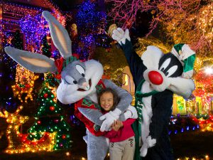 holiday-in-the-park_-bugs-bunny-sylvester-and-child